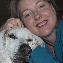 heal betsy jim adopting right pet