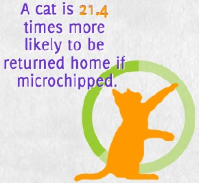 heal microchip